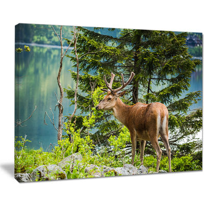Designart Designart Deer Stag Near The Lake Canvas Art