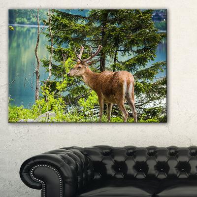Designart Designart Deer Stag Near The Lake Canvas Art