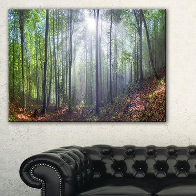 Designart Morning Sun Rays In Carpathian 3-pc. Canvas Art