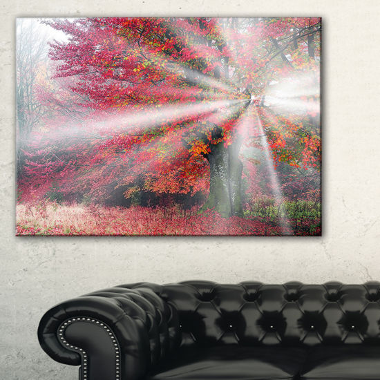 Designart Mystical Light In Red Fall Forest Canvas Art