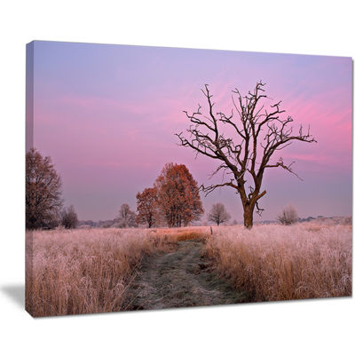 Designart Fairy Autumn Sunrise With Lonely Tree Canvas Art