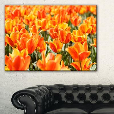 Designart Fresh Tulip Flowers On Sunny Day Canvas Art