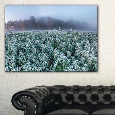 Designart Frozen Hemp Field In Autumn Morning Canvas Art