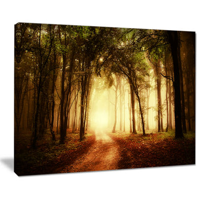 Designart Golden Forest In Fall Morning Canvas Art