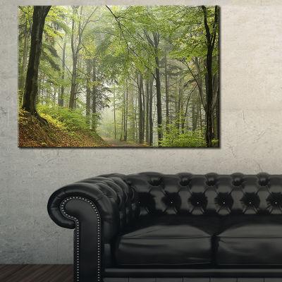 Designart Green Beach Forest Pathway 3-pc. Canvas Art