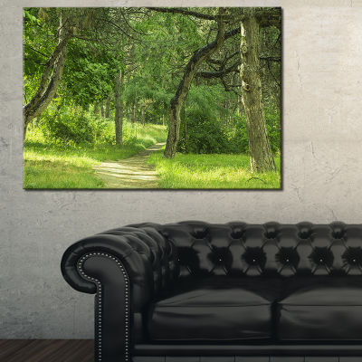 Designart Green Forest Path In Early Summer Canvas Art