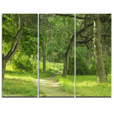 Designart Green Forest Path In Early Summer 3-pc. Canvas Art