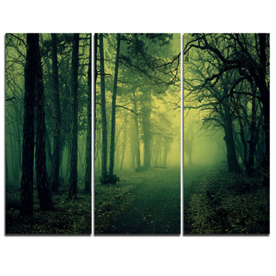 Designart Green Light In Thick Mist Forest 3-pc. Canvas Art