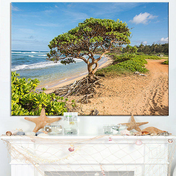 Designart Green Tree On Beach In Kauai Hawaii Canvas Art
