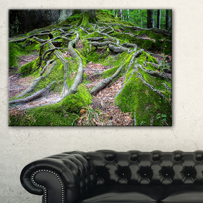 Designart Green Wild Deep Moss Forest Canvas Art