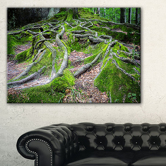 Designart Green Wild Deep Moss Forest Canvas Art