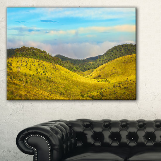 Designart Horton Plains Under Blue Sky Canvas Art