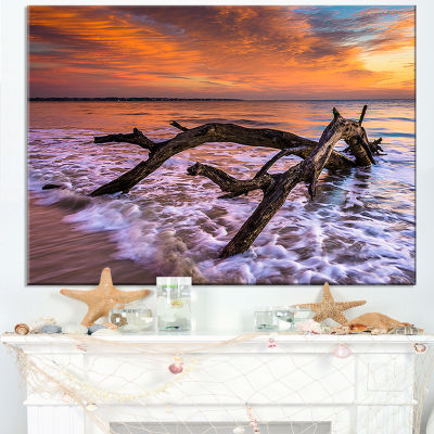 Designart Huge Branch Of Tree At Seashore Canvas Art