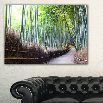 Designart Kyoto Bamboo Forest Pathway Canvas Art