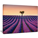 Designart Lavender And Lonely Tree Uphill Canvas Art