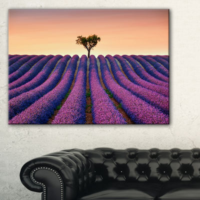 Designart Lavender And Lonely Tree Uphill 3-pc. Canvas Art