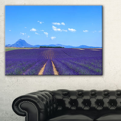 Designart Lavender Blooming Fields And Trees Canvas Art