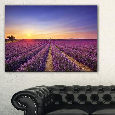 Designart Lavender Field In Provence France Canvas Art
