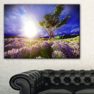Designart Lavender Field Under Blue Sky Canvas Art
