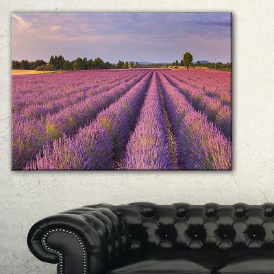 Designart Lavender Flower Rows In France Canvas Art