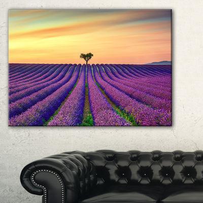 Designart Lavender Flower Rows In Provence Canvas Art