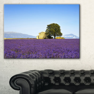 Designart Lavender Flowers Blooming Field Canvas Art