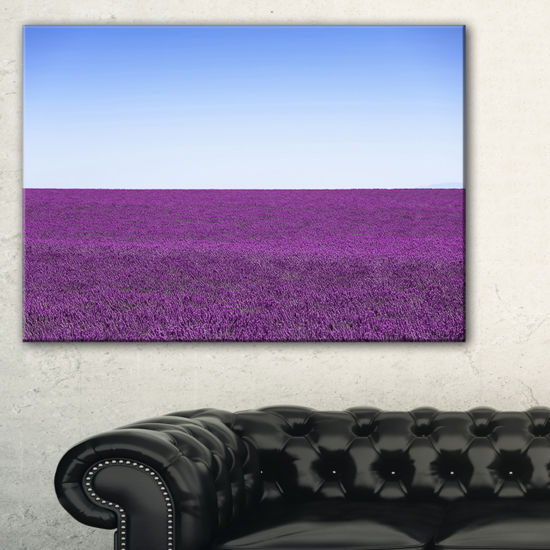 Designart Lavender Flowers With Blue Horizon Canvas Art