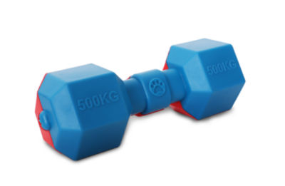 Pet Life Dumbbell Durable Water Floating Chew andFetch Dog Toy