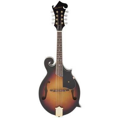 Archer Telluride F-Style Mandolin