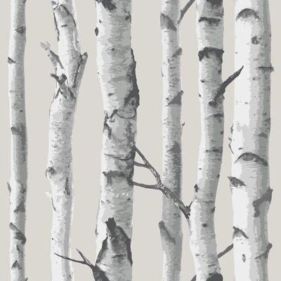 Birch Tree Peel-and-Stick Wallpaper