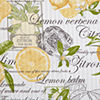 Home Expressions Lemon Zest Rod-Pocket Tie Up Valance