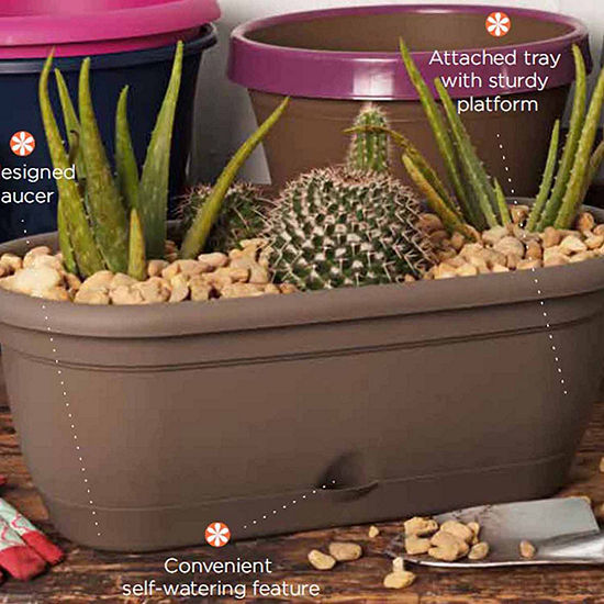 Bloem Lucca Self Watering Window Box 18 Jcpenney