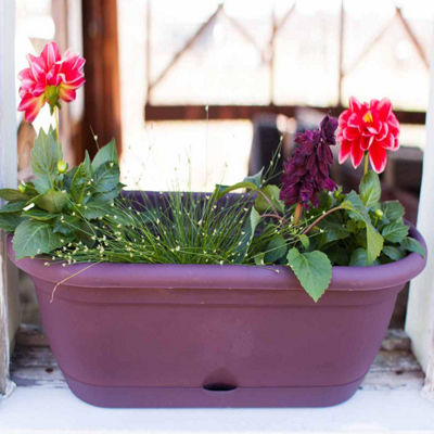 Bloem Lucca Self Watering Window Box - 18""