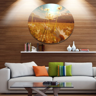 Designart Blooming Chamomiles in Meadow Large Flower Metal Circle Wall Art