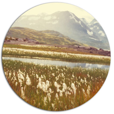 Designart Arctic Cotton Flowers Meadow Large Flower Metal Circle Wall Art