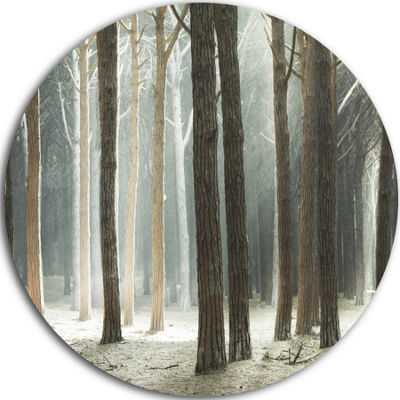 Designart Maritime Pine Tree Forest with Rays Oversized Forest Metal Circle Wall Art