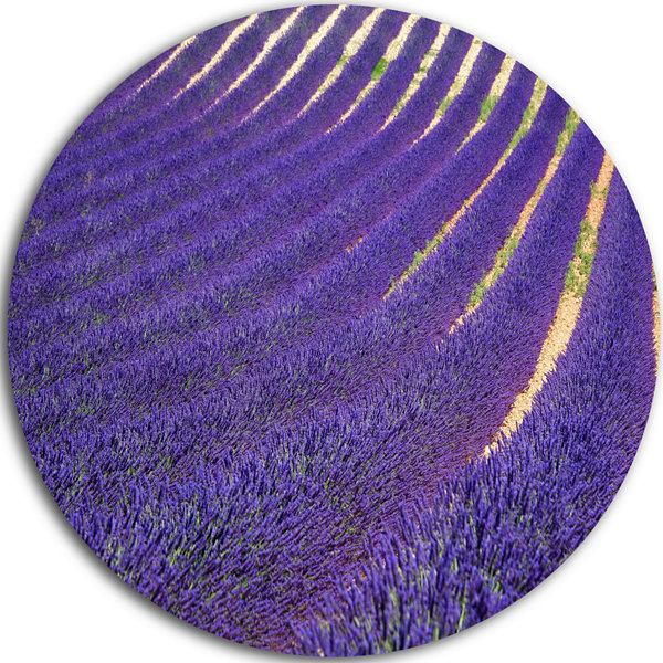 Designart Lavender Blooming Fields as Texture Oversized Landscape Wall Art Print