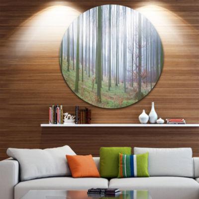 Designart Autumn Tree Trunks Panorama Oversized Forest Metal Artwork