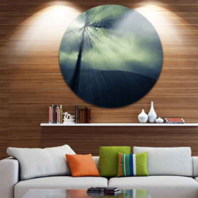 Designart Dead Tree in the Mysterious Land Seascape Metal Artwork