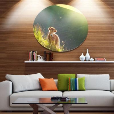 Designart Cow Grazing on Meadow Evening OversizedLandscape Metal Circle Wall Art