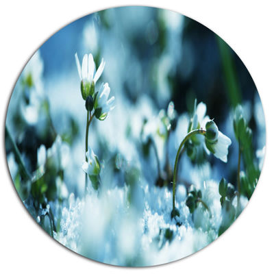 Designart Little White Flowers in Meadow Large Flower Metal Circle Wall Art
