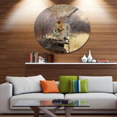 Designart Leopard Sitting on Tree Trunk Extra Large African Metal Circle Wall Art