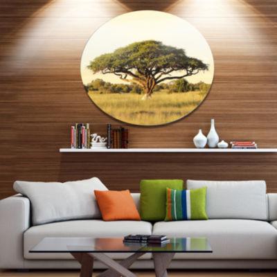 Designart Acacia Tree on African Plain Oversized African Landscape Metal Circle Wall Art