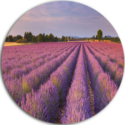 Designart Lavender Flower Rows in France LandscapeMetal Circle Wall Art