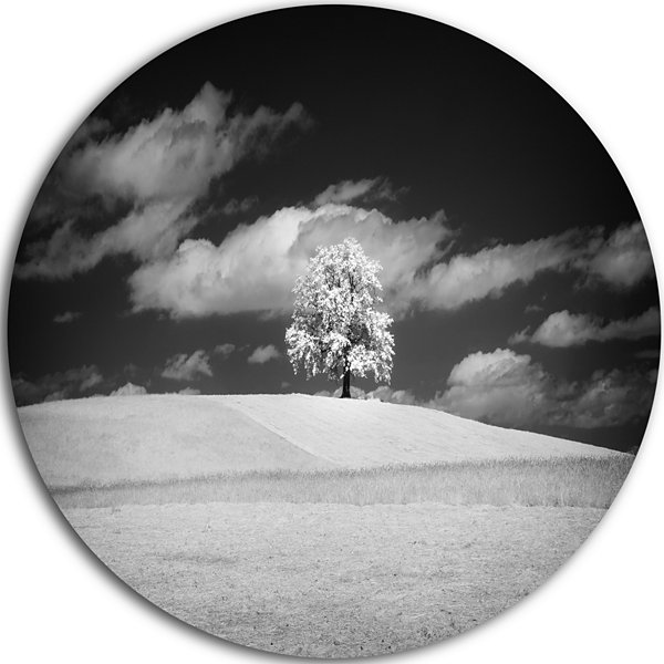 Designart Lonely Tree on Meadow Black White Landscape Metal Circle Wall Art