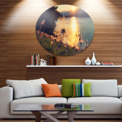 Designart Arctic Cotton Flowers At Sunset Floral Metal Circle Wall Art