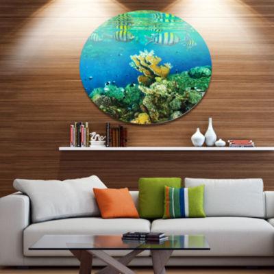 Designart Fantastic Red Sea Coral Fish Seashore Oversized Metal Circle Wall Art