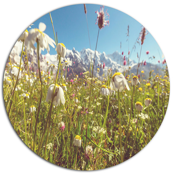 Designart Blooming Mountain Meadow Flowers Large Flower Oversized Metal Circle Wall Art