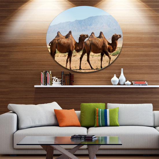 Designart Huge Camels on Tomb Ruins African Oversized Metal Circle Wall Art