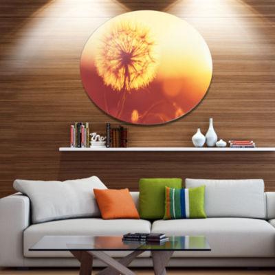 Designart Blossom Dandelion Flower on Brown LargeFlower Oversized Metal Circle Wall Art